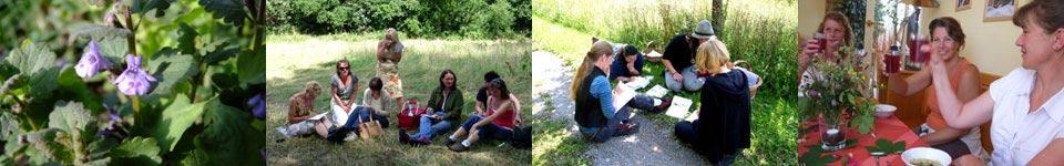 Kräuterpädagoge - Gundermann Naturerlebnisschule